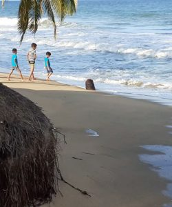 கடலரிப்பால் காணாமல் போகும் நிலங்கள்: தவிக்கும் கரையோர மக்கள்